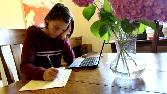 athletic preteen female doing homework in dining room with laptop and paper - homework stock videos & royalty-free footage