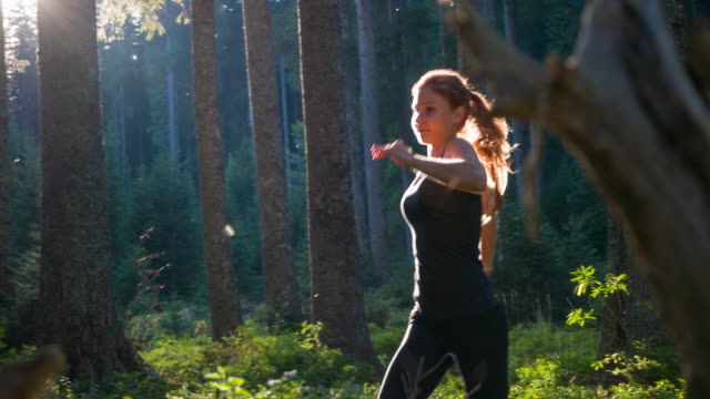 athletic woman jogging in forest - endurance stock videos and b-roll footage
