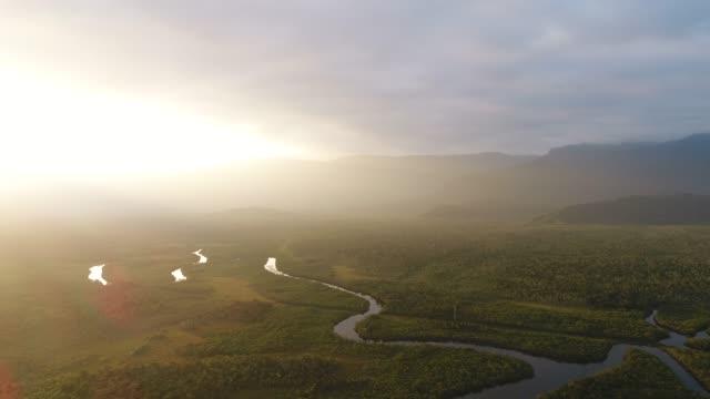 vidéos et rushes de forêt atlantique (mata atlantica) et les zones humides - fleuve et rivière