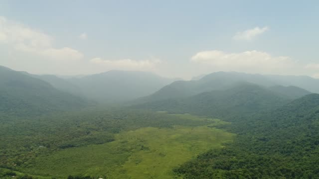 atlantic forest in brazil - national grassland stock videos & royalty-free footage