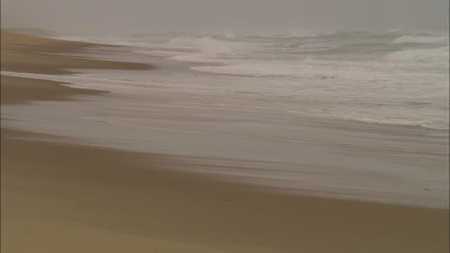 atlantic ocean waves wash onto coast guard beach. - brandung stock-videos und b-roll-filmmaterial