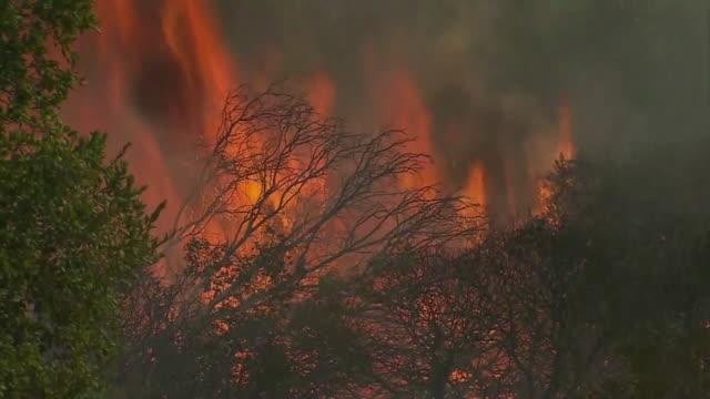 KTXL Atlas Fire in Napa Valley