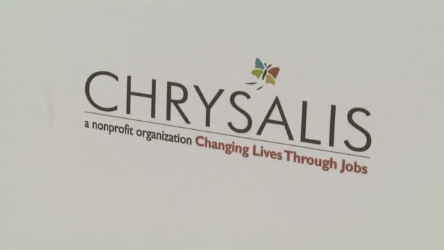 atmosphere at the 7th annual chrysalis butterfly ball at los angeles california - chrysalis butterfly ball video stock e b–roll
