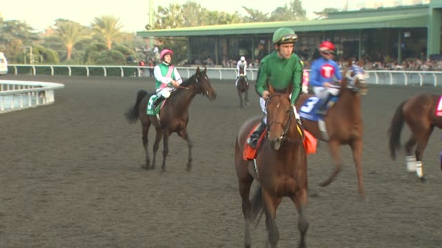 atmosphere at the breeders' cup world thoroughbred championships at arcadia ca. - championships stock videos & royalty-free footage