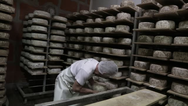 vídeos de stock e filmes b-roll de atmosphere at the entremonts dairy cooperative in chartreuse mountain range which continues to produce cheese during the lockdown period due to the... - feito em casa