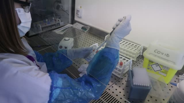 stockvideo's en b-roll-footage met atmosphere at the metropole savoie hospital center during the coronavirus health crisis on april 10, 2020 in chambery, france. a medical staff member... - laboratorium