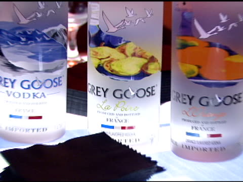 grey goose vodka at the details celebration of 2007 mavericks presented by emporio armani at private residence in brentwood california on march 29... - grey goose vodka stock videos & royalty-free footage