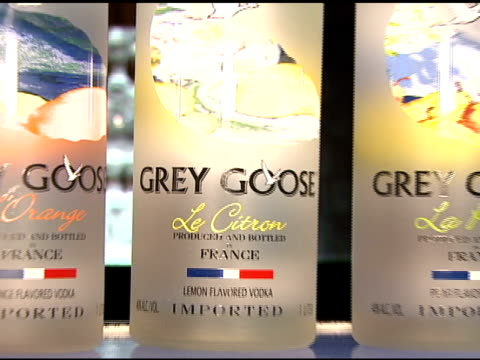 grey goose vodka at the details celebration of 2007 mavericks, presented by emporio armani at private residence in brentwood, california on march 29,... - グレイグース点の映像素材/bロール