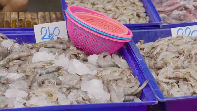 vidéos et rushes de atmosphere of fresh seafood on the shelf,customer,buying-selling in seafood market,anonymous people and tourist,shopping product,at food local shop,mahachai seafood market,samut sakhon,thailand,2021. - partie du corps d'un animal