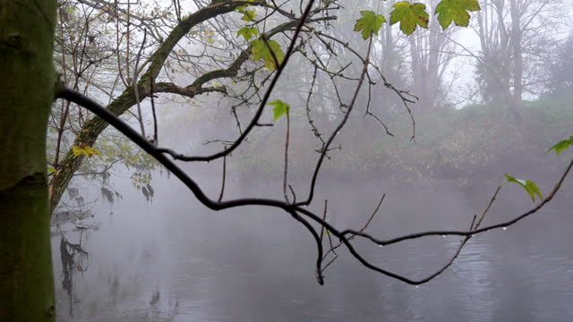 atmospheric scenes on the river lea near the hackney marshes as thick fog descends on the country on november 27, 2020 in london, england. the unique... - atmospheric mood stock videos & royalty-free footage