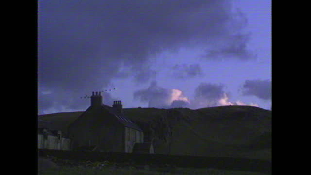 atmospheric shots of greenland white-fronted geese flying against blue twilight sky over a stone farmhouse on the island of islay, inner hebrides,... - twilight stock videos & royalty-free footage