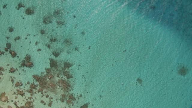 Atoll reefs and tropical lagoon, Rangiroa, French Polynesia