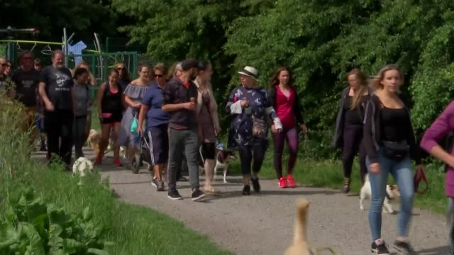 Attacks at South Norwood Country Park prompt protest ENGLAND London South Norwood Country Park EXT Various shots of group along path with dogs on...