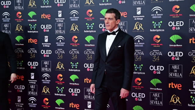 banderas attends the goya cinema awards 2020 during the 34th edition of the goya cinema awards at jose maria martin carpena sports palace on january... - antonio banderas stock videos & royalty-free footage