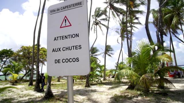 vidéos et rushes de attention falling coco - guadeloupe