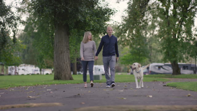 attractive couple walking their dog in a park - mature couple stock videos & royalty-free footage