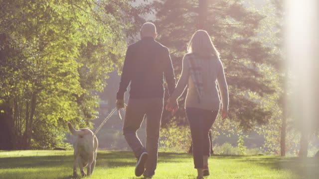 Attractive couple walking their dog in a park