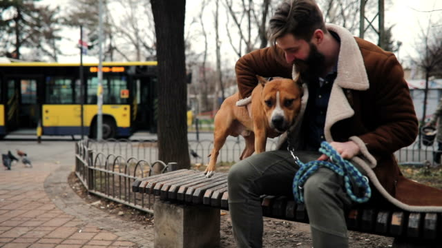 attractive hipster man with his cute dog in the park - neighbour stock videos and b-roll footage