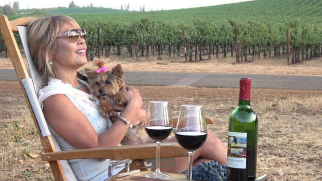 attractive woman enjoying a picnic in the vineyard with her adorable lap dog. - lap dog stock videos & royalty-free footage
