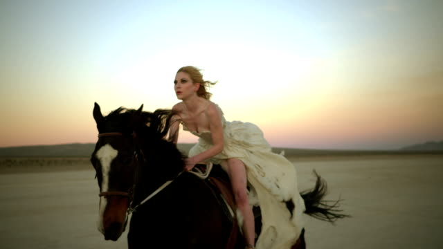 (slow motion) attractive woman riding horse 05 - horse stock videos & royalty-free footage