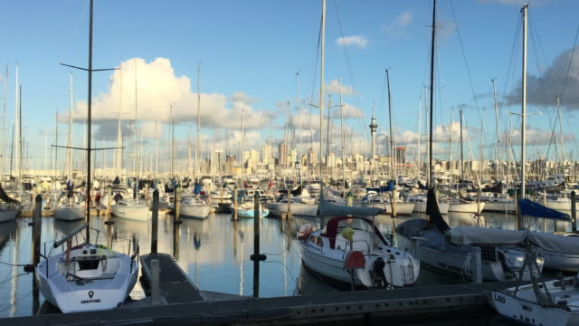 auckland city cbd skyline from westhaven marina - marina stock videos & royalty-free footage