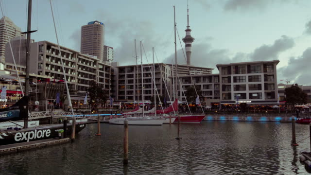Auckland city from Marina.