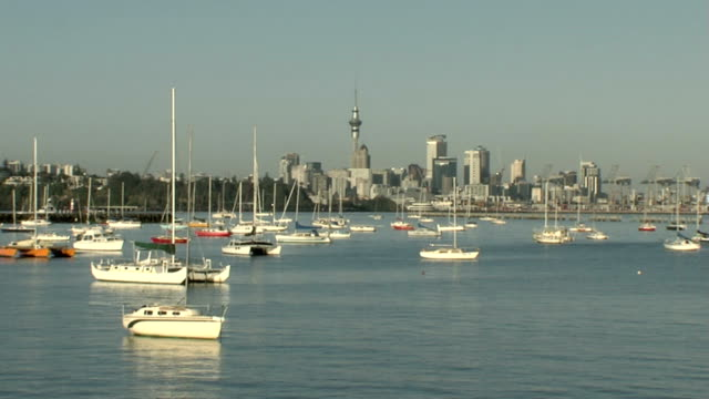 auckland city / harbour - yachting stock videos & royalty-free footage