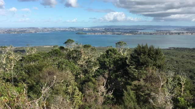 Auckland City Skyline From Rangitoto Island New Zealand