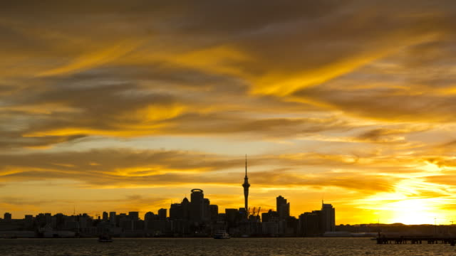 auckland city sunset - auckland ferry stock videos & royalty-free footage