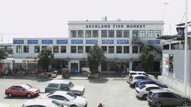 auckland fish market - facade stock videos & royalty-free footage