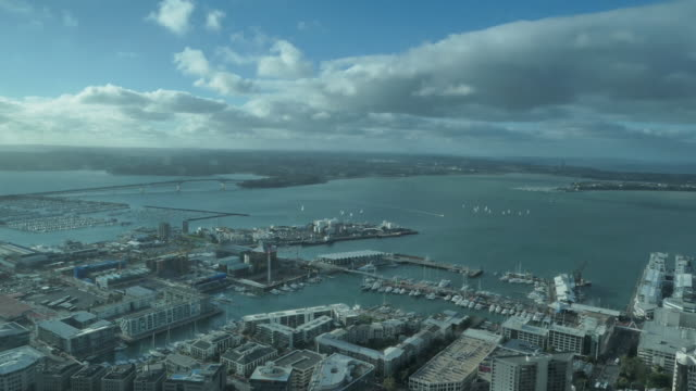 auckland new zealand. - barry kusuma stock videos and b-roll footage