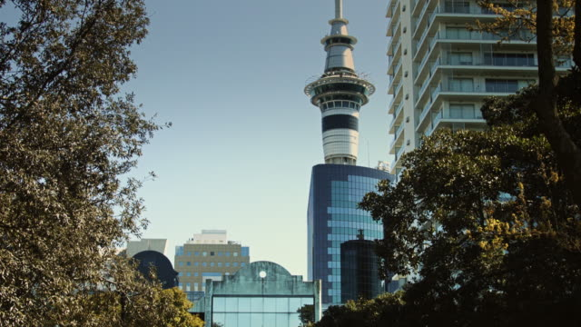 auckland sky tower over albert park - downtown stock videos & royalty-free footage