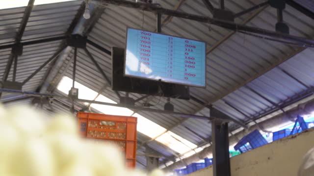 auction screen at silkworm cocoon market at ramanagara, bangalore - indischer subkontinent abstammung stock-videos und b-roll-filmmaterial