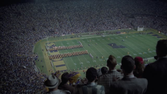 HA audience cheering on stadium, Tiger Stadium, Baton Rouge, Louisiana, USA