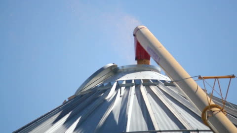 auger transferring harvest corn to bin - lasta bildbanksvideor och videomaterial från bakom kulisserna
