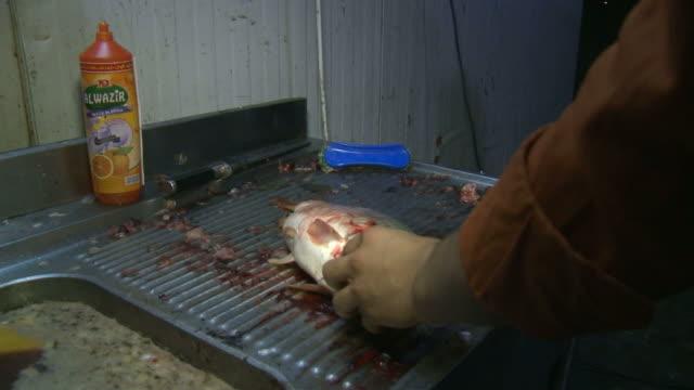 vídeos y material grabado en eventos de stock de august 16, 2010 cook gutting a fish in a restaurant kitchen / baghdad, iraq - formato buzón