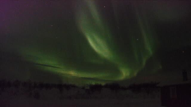 Aurora borealis, Northern Lights over woodland, Karasjok, Norway, February 2008