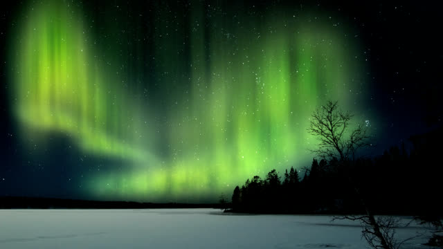 aurora borealis-northern lights - kanada stock-videos und b-roll-filmmaterial