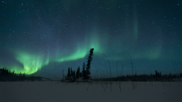 aurora borealis - canada stock videos & royalty-free footage