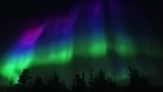 aurora borelis - non flickering northern light 4k - svezia video stock e b–roll