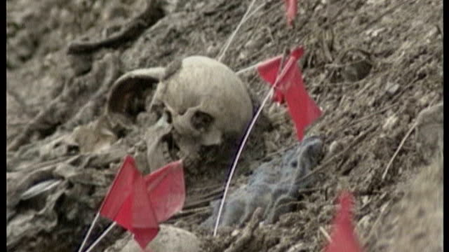 commemorations around the world t11070536 bosnia srebrenica potocari human skull amongst other remains on surface of exhumed pit - srebrenica stock videos and b-roll footage