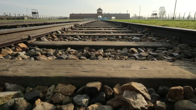 Auschwitz II Birkenau extermination camp on November 15 2014 in Oswiecim Poland Ceremonies marking the 70th anniversary of the liberation of the camp...
