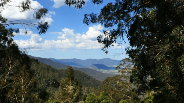 australia dividing range view pan - 2014年点の映像素材/bロール