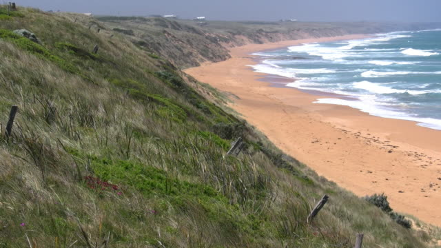 australia great ocean road logans beach with windy grass - 打ち寄せる波点の映像素材/bロール