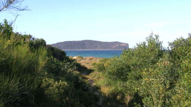 Australia headland at Durras zoom