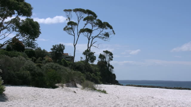 Australia Hyams Trees and beach at Jervis Bay