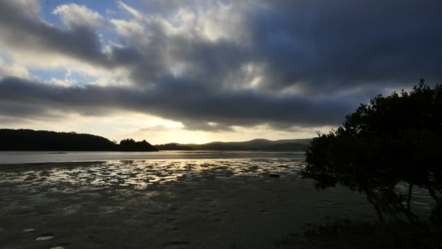 australia late evening at narooma - low tide stock videos & royalty-free footage