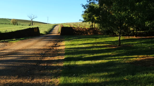 australia mt bellevue road past vineyards - stone wall stock videos and b-roll footage