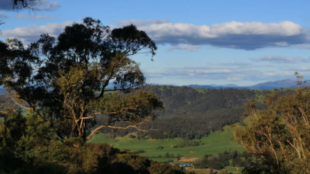 australia mt bellevue view framed with tree - wilderness stock videos & royalty-free footage