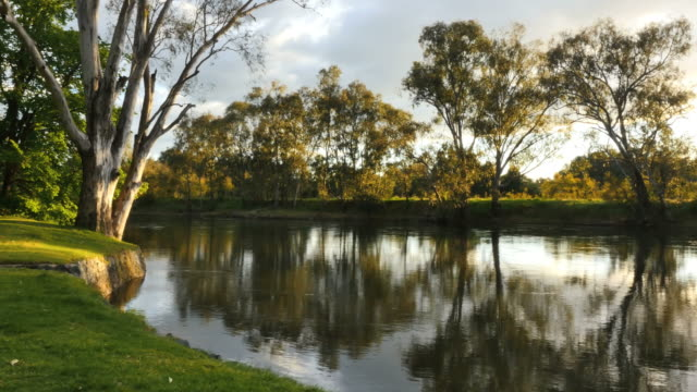 australia murray river at albury lovely reflections - 2014年点の映像素材/bロール